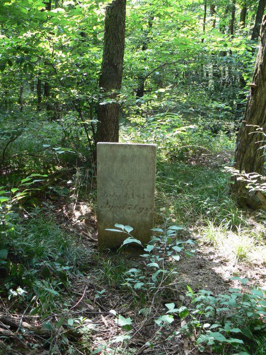 McClintock family cemetery.